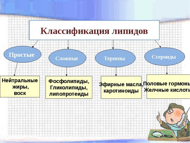 Классификация липидов Простые Сложные Терпены Стероиды Нейтральные жиры, воск...