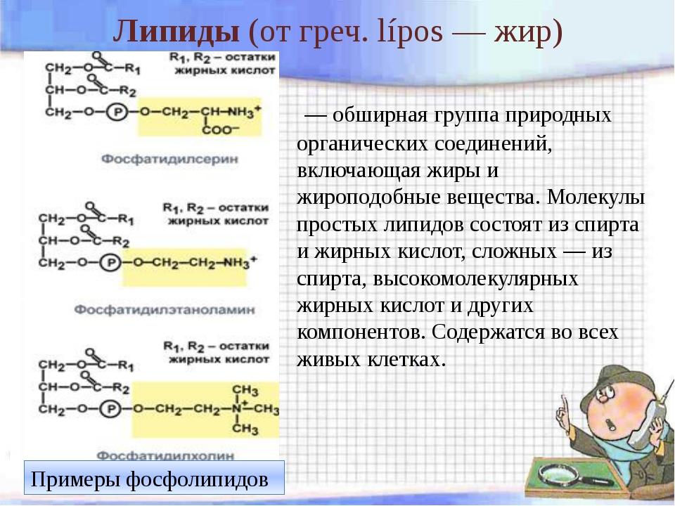 Липиды (отгреч.lípos— жир) — обширная группа природных органических соеди...