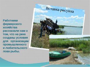 Работники фермерского хозяйства рассказали нам о том, что на реке созданы усл