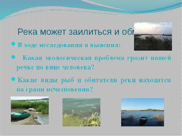 Река может заилиться и обмелеть. В ходе исследования я выяснил: Какая экологи...