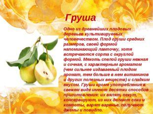 Груша Одно из древнейших плодовых деревьев культивируемых человечеством. Плод