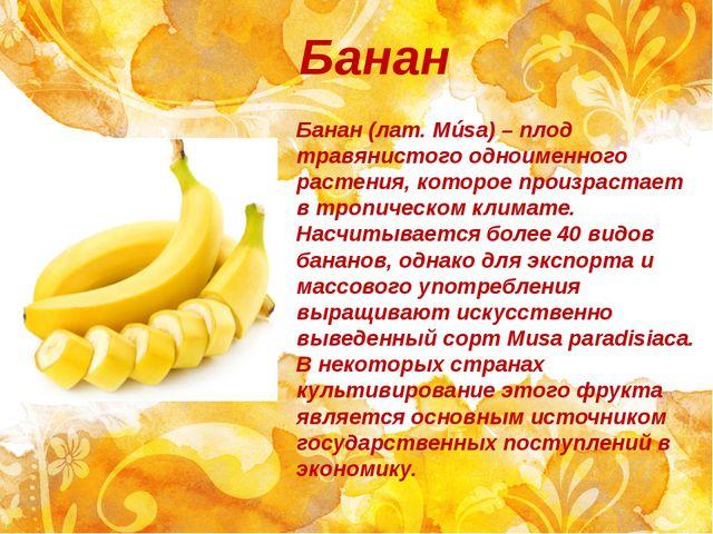Банан Банан (лат.Músa) – плод травянистого одноименного растения, которое пр...