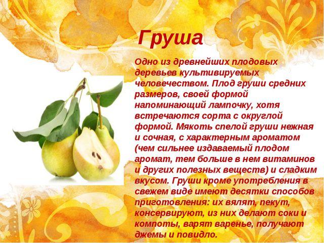 Груша Одно из древнейших плодовых деревьев культивируемых человечеством. Плод...