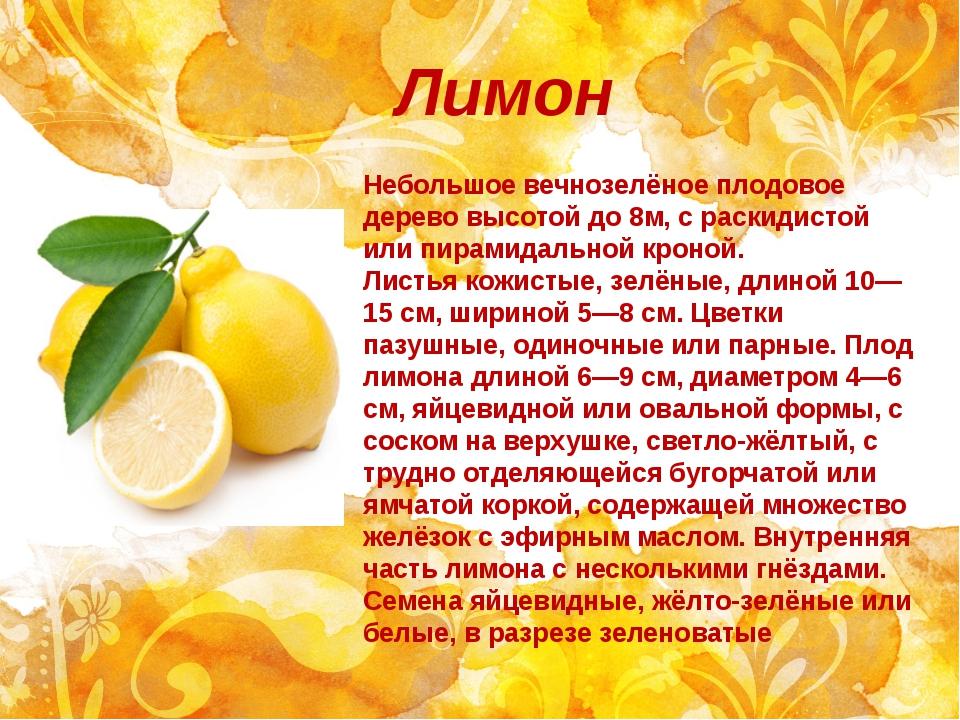 Лимон Небольшое вечнозелёное плодовое дерево высотой до 8м, с раскидистой или...