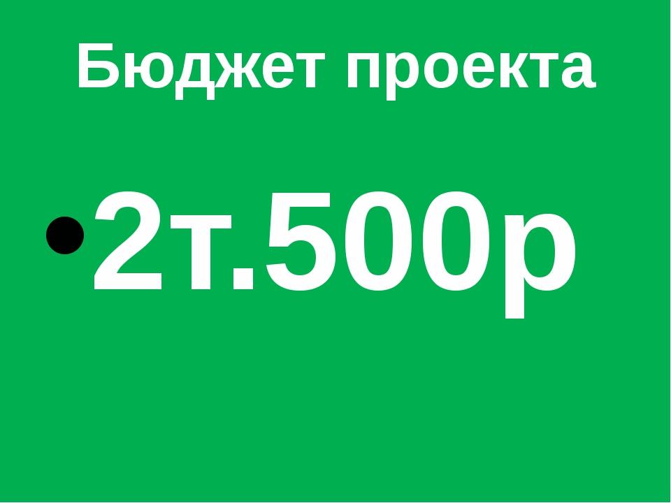 Бюджет проекта 2т.500р