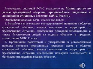 Руководство системой РСЧС возложено на Министерство по делам гражданской обо