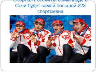 Сборная России на Олимпиаде в Сочи будет самой большой 223 спортсмена