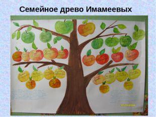 Семейное древо Имамеевых