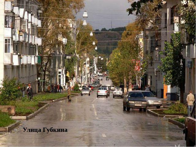Улица Губкина