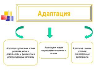 Адаптация Адаптация организма к новым условиям жизни и деятельности, к физиче