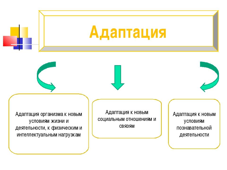 Адаптация Адаптация организма к новым условиям жизни и деятельности, к физиче...