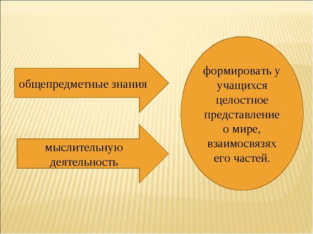 общепредметные знания мыслительную деятельность формировать у учащихся целост...