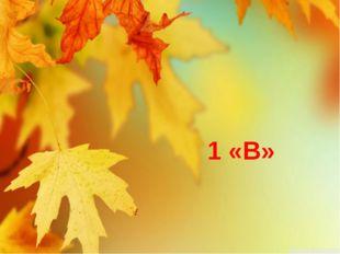 1 «В»