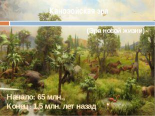 Канозойская эра (Эра новой жизни) Начало: 65 млн., Конец : 1,5 млн. лет назад