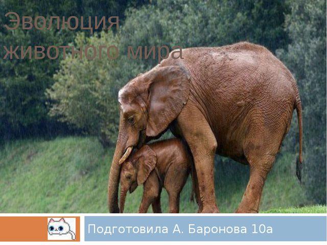 Эволюция животного мира Подготовила А. Баронова 10а