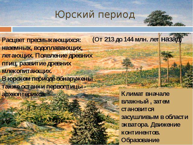 (От 213 до 144 млн. лет назад) Юрский период Расцвет пресмыкающихся: наземных...
