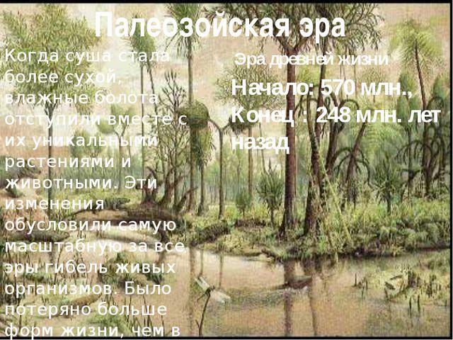 Палеозойская эра Когда суша стала более сухой, влажные болота отступили вмест...