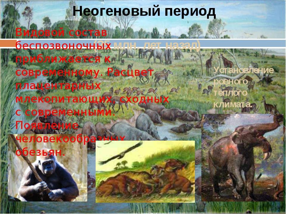 (25 млн. лет назад) Неогеновый период Видовой состав беспозвоночных приближае...