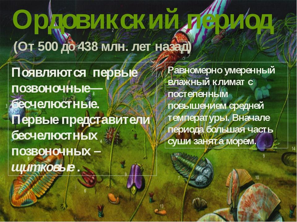 Ордовикский период (От 500 до 438 млн. лет назад) Появляются первые позвоночн...