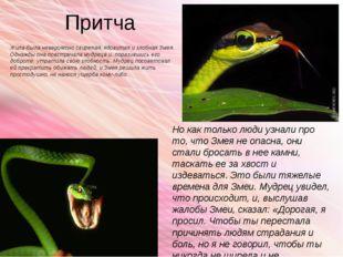 Притча Жила-была невероятно свирепая, ядовитая и злобная Змея. Однажды она по