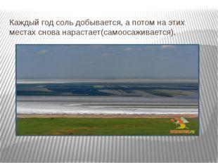 Каждый год соль добывается, а потом на этих местах снова нарастает(самоосажив