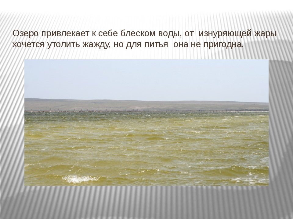 Озеро привлекает к себе блеском воды, от изнуряющей жары хочется утолить жажд...