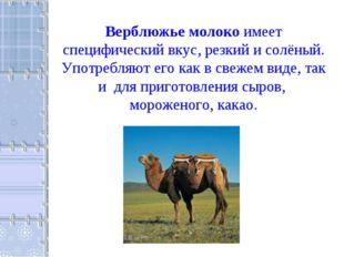 Верблюжье молоко имеет специфический вкус, резкий и солёный. Употребляют его