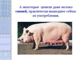 А некоторые ценили даже молоко свиней, практически вышедшее сейчас из употреб