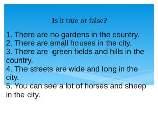 1. There are no gardens in the country. 2. There are small houses in the city