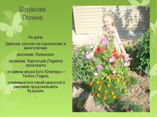 Шуракова Полина. На даче. Цветник состоит из однолетних и многолетних растени