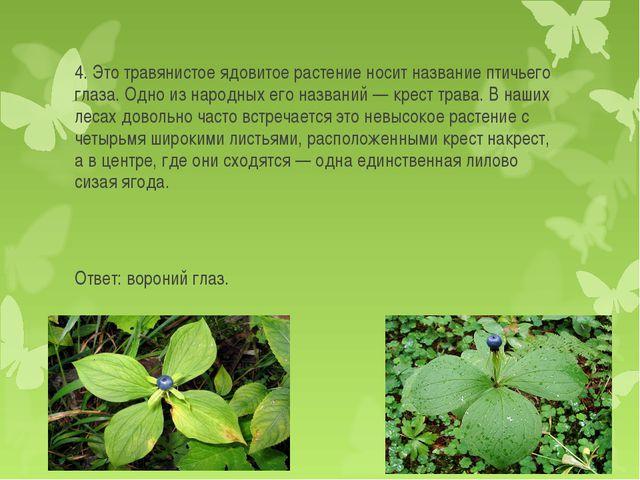 4. Это травянистое ядовитое растение носит название птичьего глаза. Одно из н...