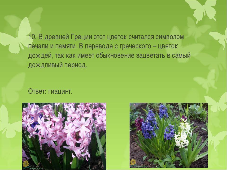 10. В древней Греции этот цветок считался символом печали и памяти. В перевод...