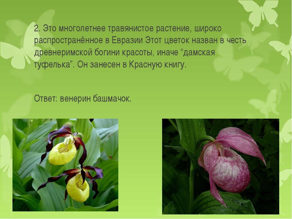 2. Это многолетнее травянистое растение, широко распространённое в Евразии Эт...