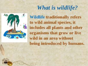 What is wildlife? Wildlife traditionally refers to wild animal species, it i