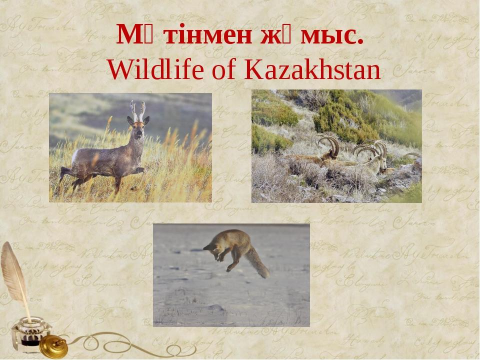 Мәтінмен жұмыс. Wildlife of Kazakhstan
