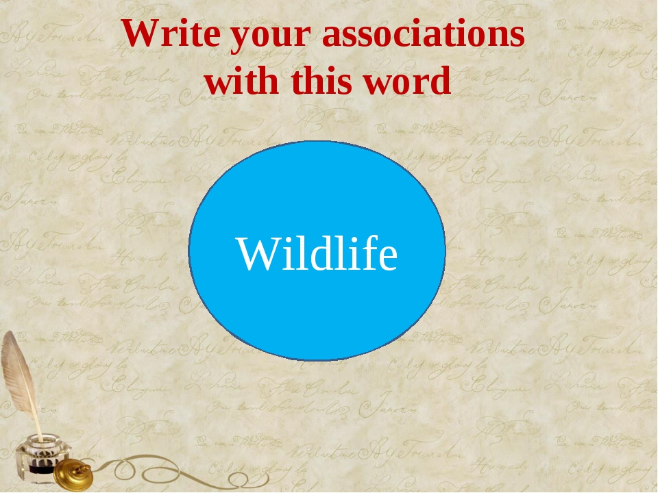 Write your associations with this word Wildlife