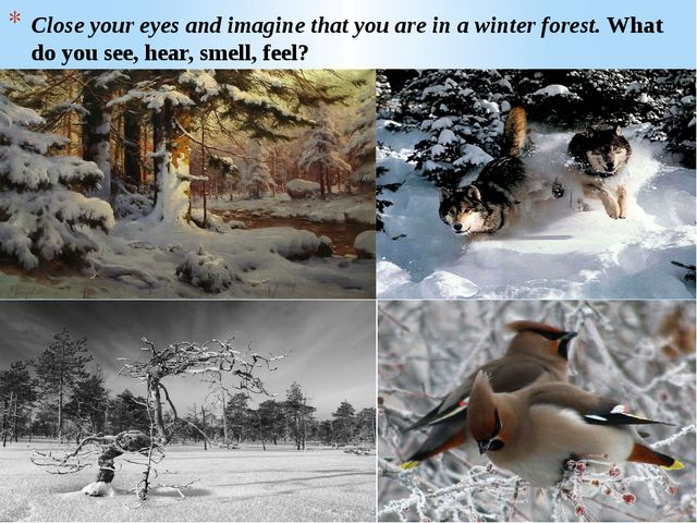 Close your eyes and imagine that you are in a winter forest. What do you see,...
