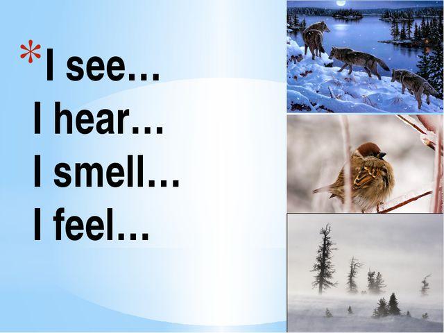 I see… I hear… I smell… I feel…