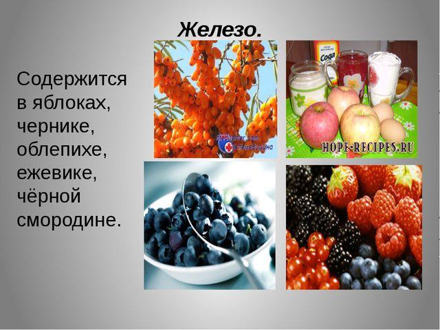 Железо. Содержится в яблоках, чернике, облепихе, ежевике, чёрной смородине.