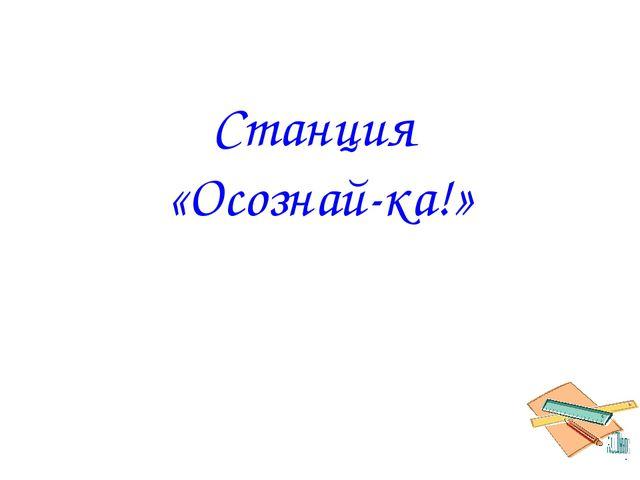 Станция «Осознай-ка!»