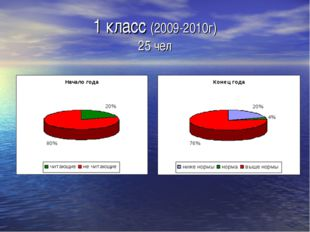 1 класс (2009-2010г) 25 чел