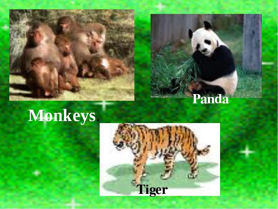 Tiger Panda Monkeys.