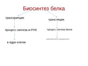 Биосинтез белка транскрипция трансляция процесс синтеза и-РНК процесс синтеза