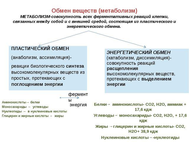 Обмен веществ (метаболизм) МЕТАБОЛИЗМ-совокупность всех ферментативных реакци...