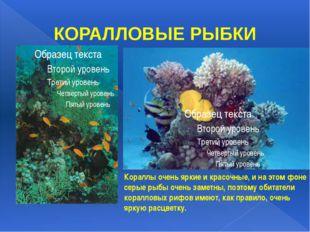 КОРАЛЛОВЫЕ РЫБКИ Кораллы очень яркие и красочные, и на этом фоне серые рыбы о