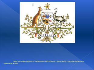 Страус эму, кенгуру изображены на государственном гербе Австралии, а ехидна