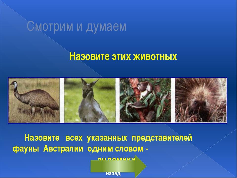 Смотрим и думаем Назовите этих животных Назовите всех указанных представител...