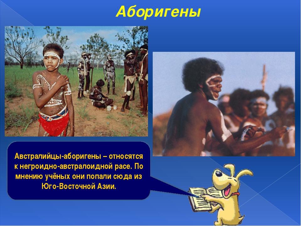 Аборигены Австралийцы-аборигены – относятся к негроидно-австралоидной расе. П...