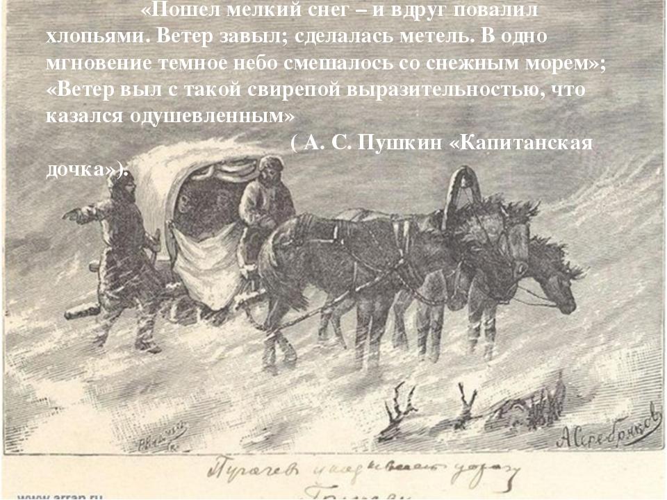 «Пошел мелкий снег – и вдруг повалил хлопьями. Ветер завыл; сделалась метель...