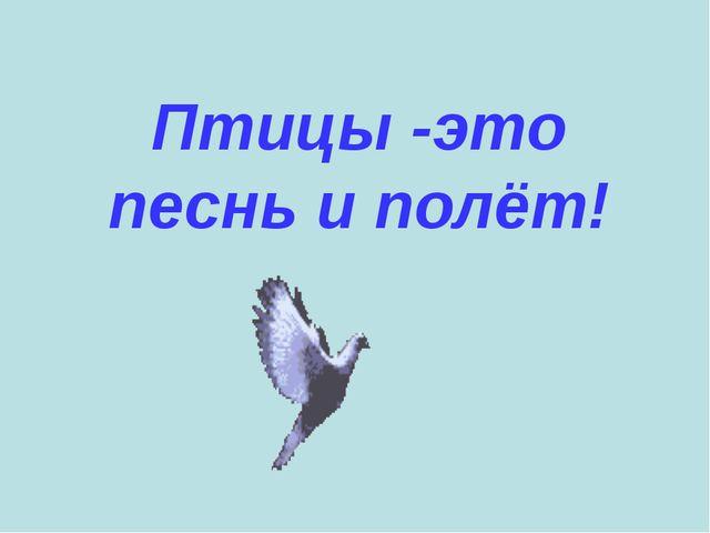 Птицы -это песнь и полёт!